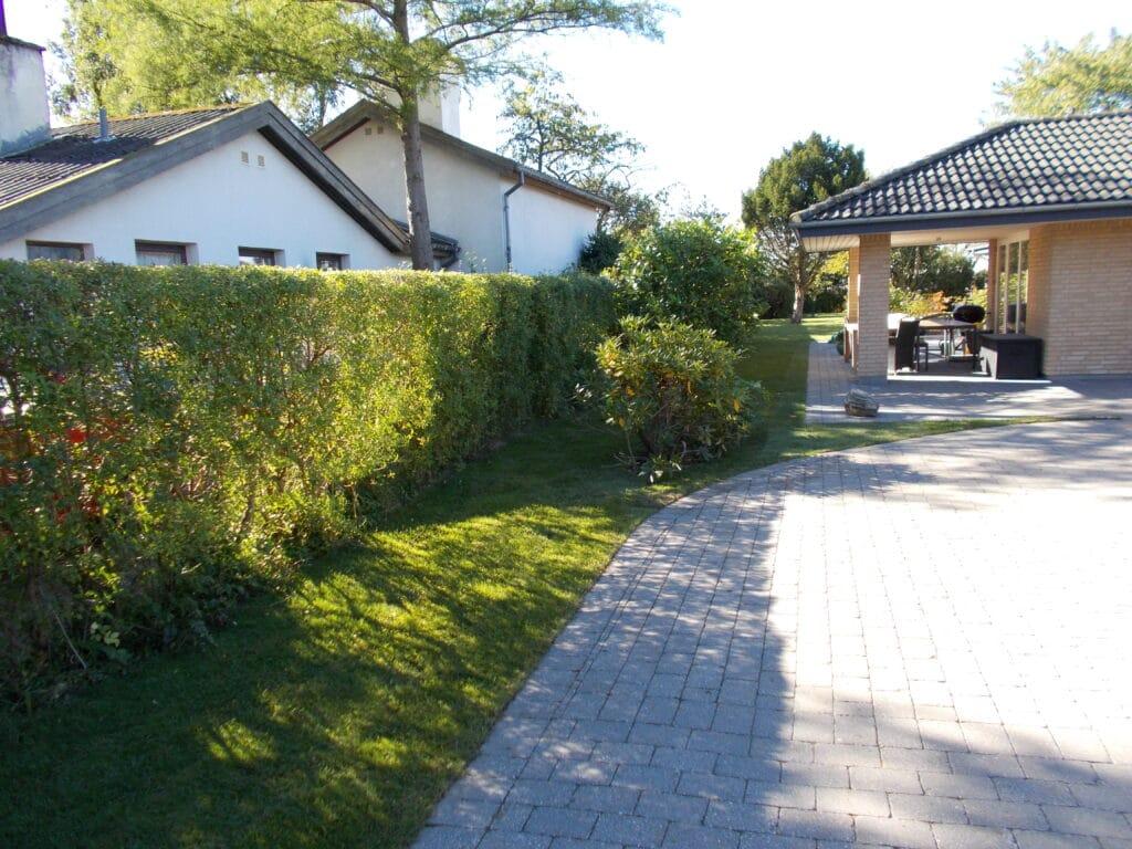 K. Nyholm Anlæg af have